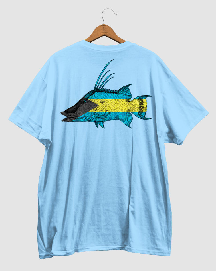 hogfish, bahamas, bahamian, flag, light blue